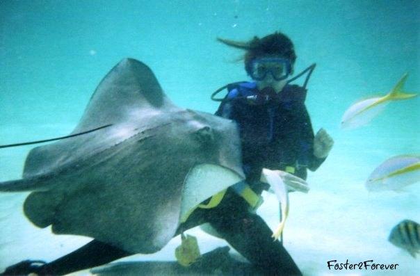 cayman-stingray-city-scuba-excursion