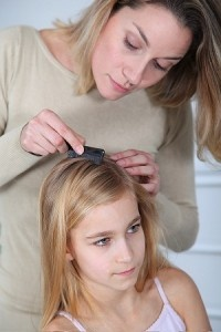 lice-coconut-oil-remedies-pinterest-blog