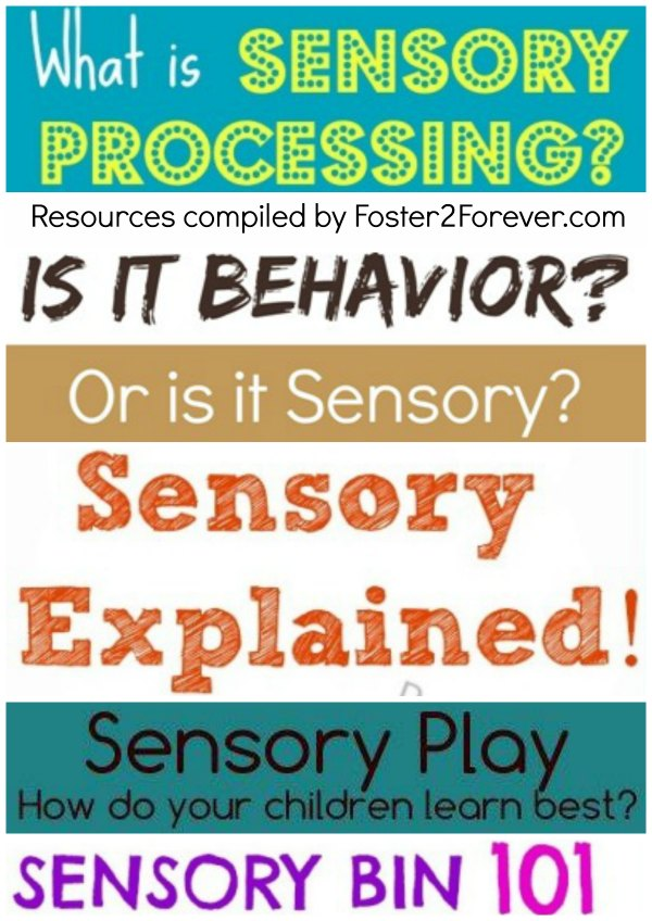 sensory-processing-disorder-integration-bins