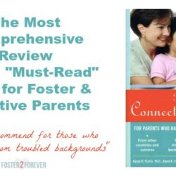 the-connected-child-book-summary